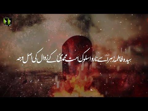 [Clip] Syeda Fatima Zehra Say Ummat Ka Na Rawa Salook, Ummat-e-Muhammadi (saww) Kay Zawaal Ke Wajah | Urdu